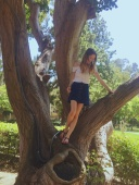 Me in a tree. Location: The University of California Los Angeles